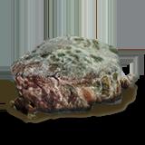 Разлагающееся мясо